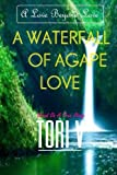 A Waterfall Of Agape Love: A Love Beyond Love