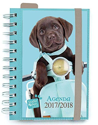 Grupo Erik Editores AGVDP1702 - Agenda escolar 17/18 Dia Pagina Studio Pets Dog