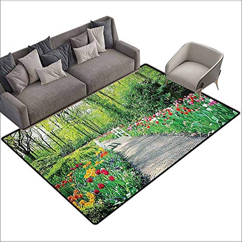 Anti-Slip Outdoor Rugs Country Home Decor Collection,Tulips in Keukenhof Gardens Path Along Colorful Flowers Nature Picture,Crimson Pink White Red Green 80
