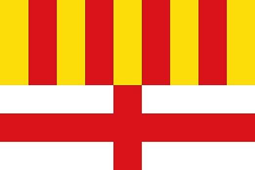 magFlags Bandera Large Manresa fosca | Manresa Barcelona, España | Manresa | Bandera Paisaje | 1.35m² | 90x150cm: Amazon.es: Jardín