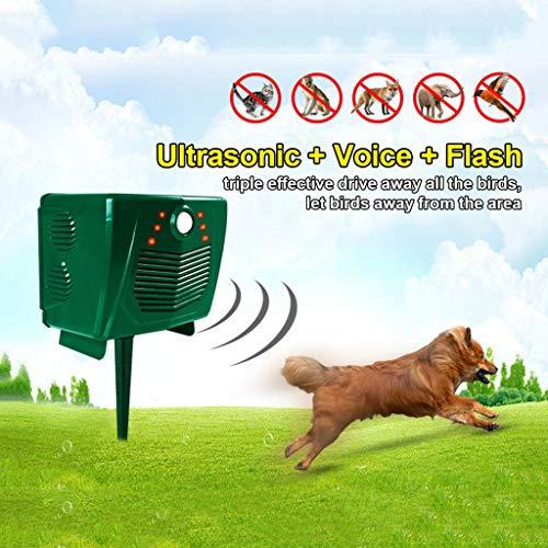 LQFLD Outdoor Garden Solar Ultrasonic Pest Deterrent Animal Repeller Wolf Dog Chaser for Outdoor Lawn Garden Yards,A ()