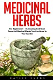 img - for Medicinal Herbs: For Beginners! - 11 Amazing And Most Powerful Medical Plants You Can Grow In Your Garden! (Herbal Remedies, Alternative Medicine, Healing Herbs) book / textbook / text book