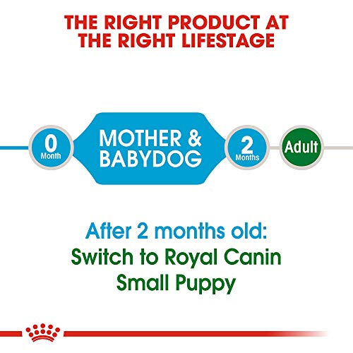Royal Canin Size Health Nutrition Small Starter Mother And Babydog Dry Dog Food, 15 Lb