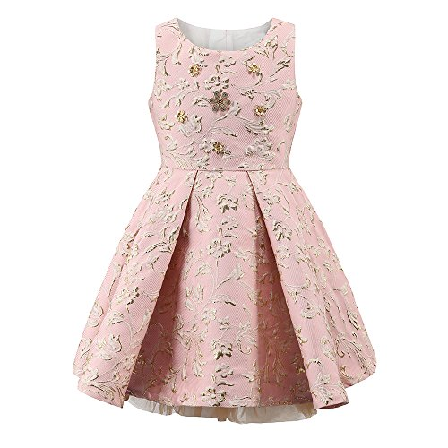 childdkivy Girls Princess Party Dress for 7-8 Years Old Pink Size 10 R1625 ()