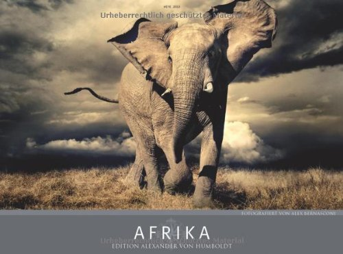 Afrika 2013