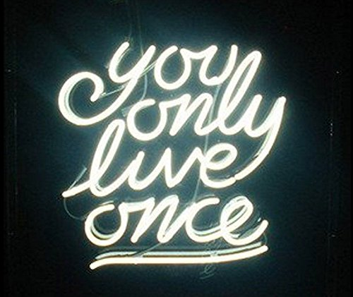 You Only Love Once Real Glass Beer Bar Neon Light Sign19x15