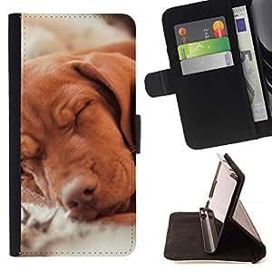 For HUAWEI P8 Lite - Vizsla Golden Retriever Hund Dog Canine /Leather Foilo Wallet Cover Case with Magnetic Closure/ - Super Marley Shop -