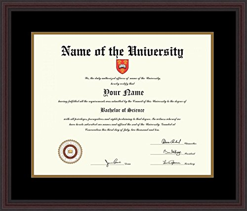 16x20 Framed Photo (ArtToFrames 16x20 Diploma Frame, Framed in Traditional Cherry with Steps, Diploma-732-89/596-D8669)