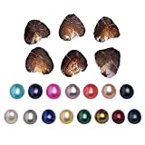 #4: 2017 Fashion 7-8mm Oysters with Large Oval Pearl inside Birthday Gifts (Random Color 10 PCS ) (7-8mm)