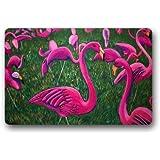 Machine-washable Door Mat Flamingo Indoor/Outdoor Decor Rug Doormat 30(L) x 18(W) Inch