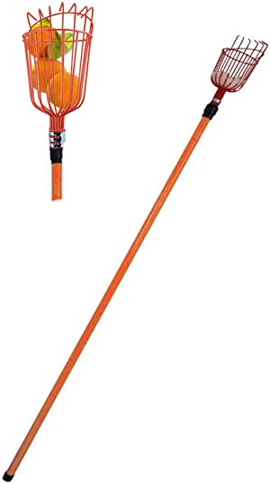 LavoHome Professional Metal Fruit Picker with Long Telescoping 8ft Pole & Fruit Catcher - Reach Fruit up to 15ft Without a Ladder