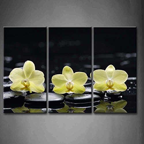 3 Panel Wall Art Yellow Orange Still Life With Pebbles And Three Orchid Painting Pictures Print On Canvas Flower The Picture For Home Modern Decoration piece (Stretched By Wooden Frame,Ready To Hang) - Three Pebbles