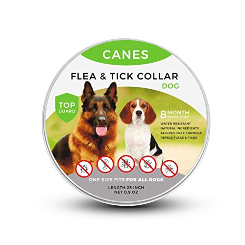 CANES Flea and Tick Prevention for Dogs, Natural Flea and Tick collar for Dogs, Safe and Hypoallergenic, One Size Fits All, 25 inch, 8 MONTH PROTECTION, Charity
