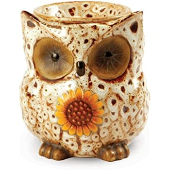 Amazon Com Owl Electric Ceramic Tart Candle Warmer White
