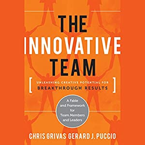 The Innovative Team: Unleashing Creative Potential for Breakthrough Results Audiobook