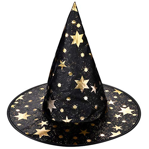 Lux Accessories Halloween Black and Goldtone Star Witch Hat