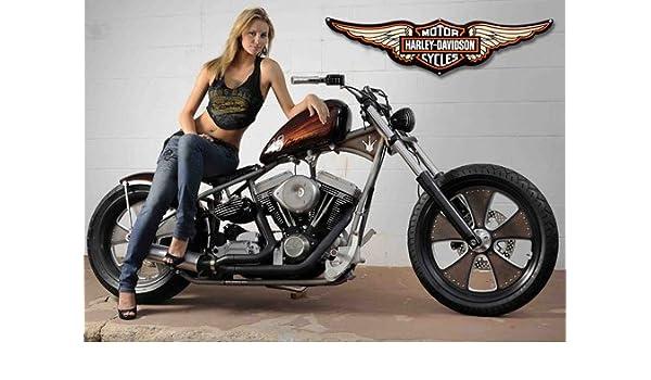 Harley davidson - 1 - Moto - classic bike - bicicleta ...