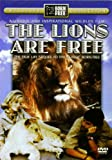 The Lions Are Free: The True Life Sequel to the Classic Born Free