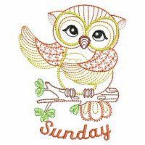 Embroidered Flour Sack Towels Days of the Week Vintage Owl Designs Set of 7