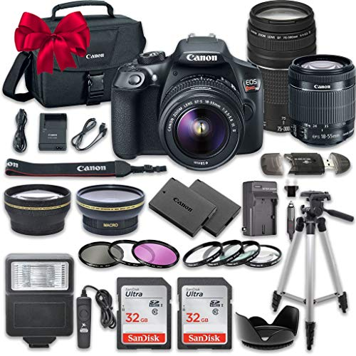 Canon EOS Rebel T6 DSLR Camera Bundle with Canon EF-S for sale  Delivered anywhere in USA