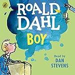 Boy: Tales of Childhood | Roald Dahl
