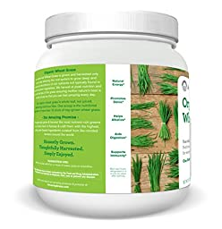 Amazing Grass  Organic Wheat Grass Powder 100 Servings, 28.2 Oz