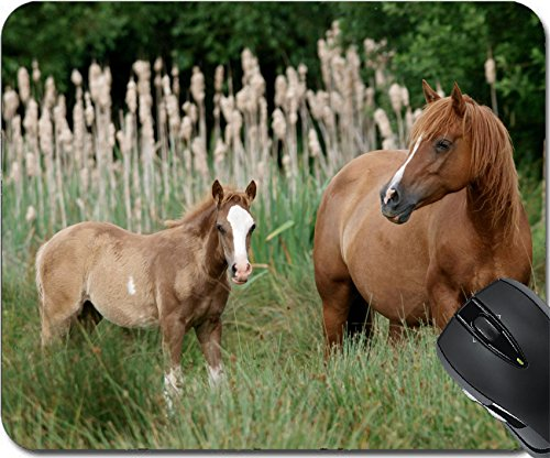 ousepad Mouse Pads/Mat design: 13750874 A Welsh Section D mare and foal stand in long grass in a paddock (Table Pad Head Section)