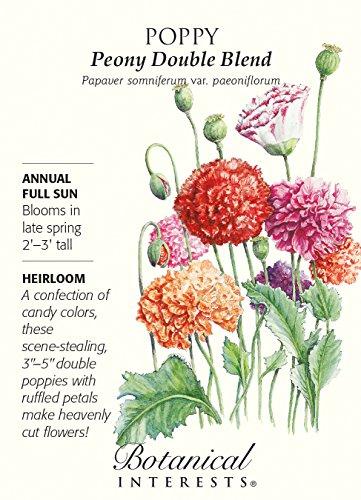 (Poppy Peony Double Blend Seeds - 1 gram)