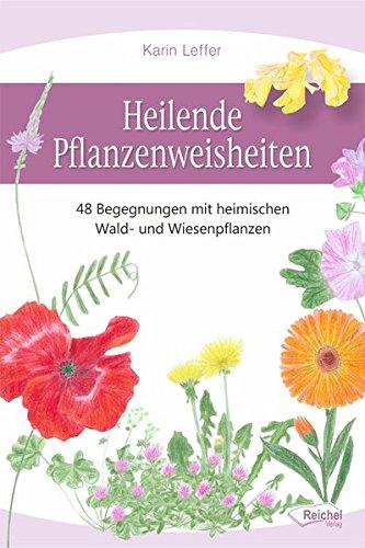 Heilende Pflanzenweisheiten: 48 Begegnungen mit heimischen Wald- und Wiesenpflanzen