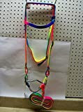 Valhoma Horse Pony Nylon Rainbow Bridle, Curb Bit, and Reins. Brow Band and Throat Latch Strap. (Pony)