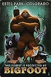 Estes Park, Colorado - Respect Our Wildlife - Bigfoot (16x24 Fine Art Giclee Gallery Print, Home Wall Decor Artwork Poster)