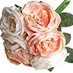 Zinnor-Artificial-Flower-Fake-Silk-9-Heads-Plastic-Ranunculus-Asiaticus-Wedding-Bouquet-Flower-Floral-Rose-Flower-Simulation-Rose-for-Home-Hotel-Office-Wedding-Party-Garden-Craft-Art-Decor-Pink