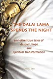 The Dalai Lama Spends the Night: and Other True Tales of Despair, Hope, and Spiritual Transformation