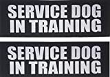 Albcorp Reflective Service Dog In Training Patches with Hook and Loop Backing for Service Animal Vests /Harnesses Medium (5 X 1.5) Inch