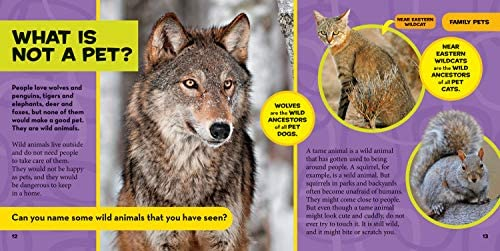 Little Kids First Big Book Of Pets National Geographic Kids Hughes Catherine D Ferguson Delano Marfe Amazon Sg Books