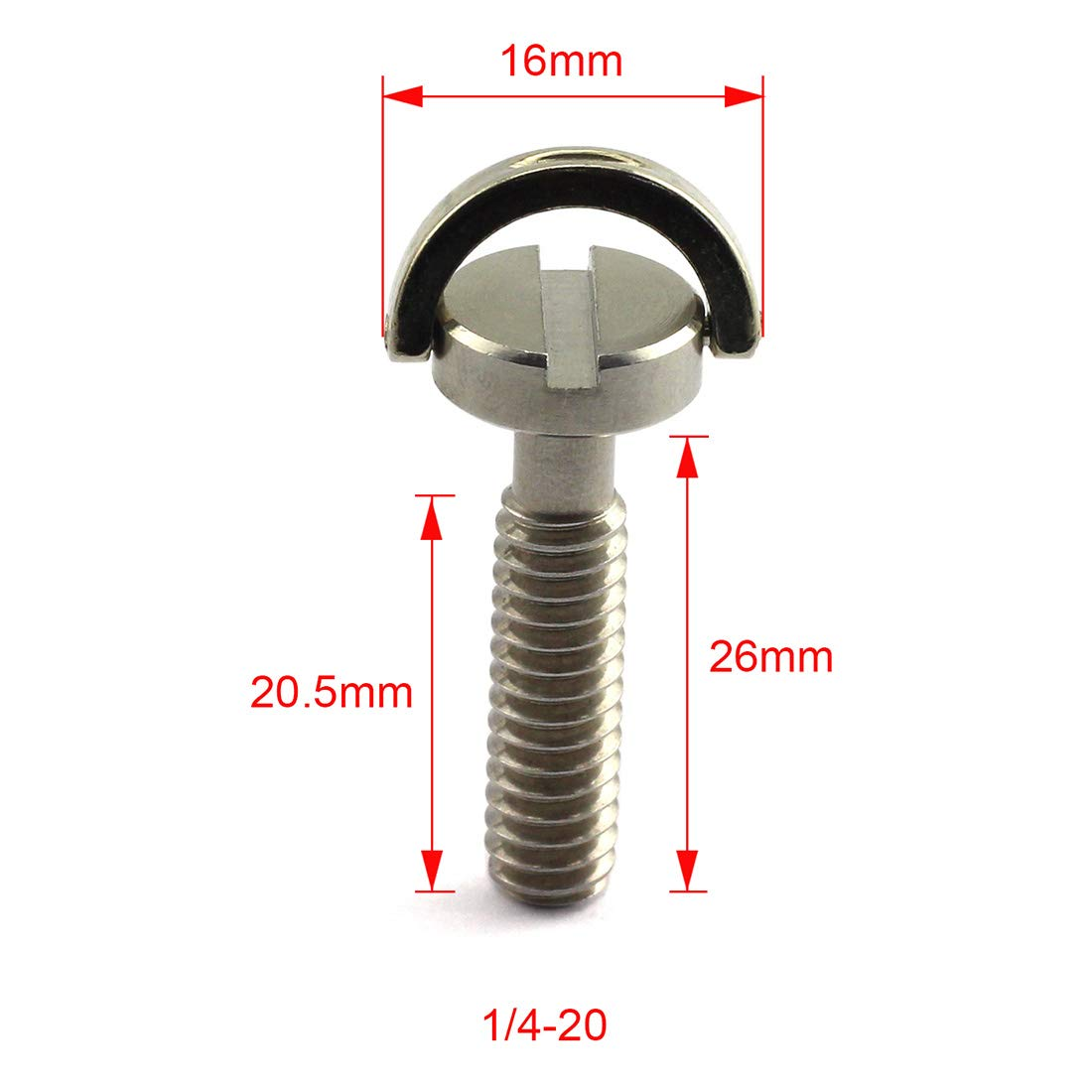 HJ Garden 2pcs 1//4-20 Thread D-Ring Stainless Steel Camera Fixing Screws for Camera Tripod Monopod QR Plate,D Shaft Quick Release Plate Mounting Screw 10mm Length