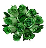 100 Real Fresh Green Roses | Exotic and amazing