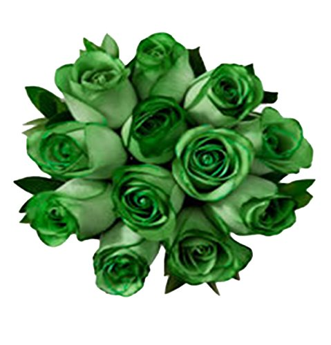 100 Real Fresh Green Roses | Exotic and amazing by FarmDirect