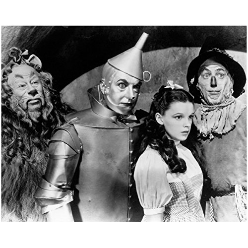 The Wizard of Oz Dorothy Scarecrow Tin Man and Lion all Wide Eyed 8 x 10 Photo