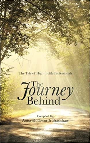 Book The Journey Behind: The Tale of High Profile Professionals by Karen Bashford (2014-10-17)