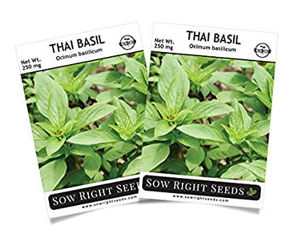 Amazon.com: Sow Right Seeds – Semillas para siembra ...