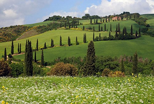 Tuscany Italy Poster Wall Art Living Room Bedroom Elegant Travel Home Decor Gift Made in the USA