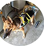 Adjustable Dog Wheelchair (L Size), for Big