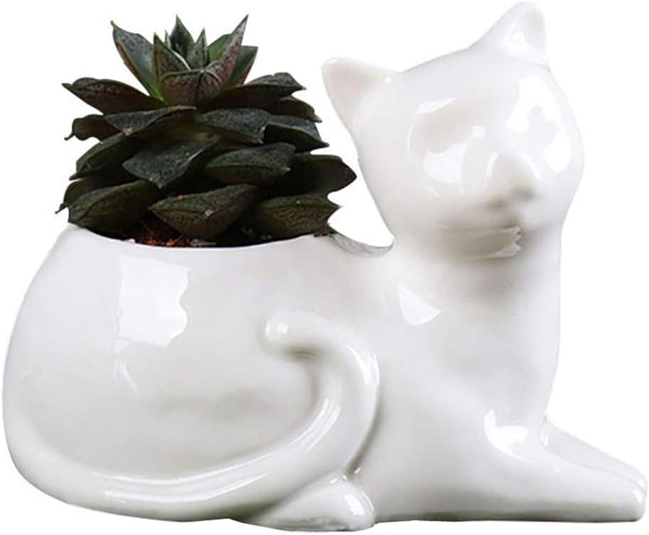 Mini Planter Ornament Cat/'s Whiskers White