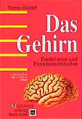 Das Gehirn: Funktionen und Funktionseinbussen