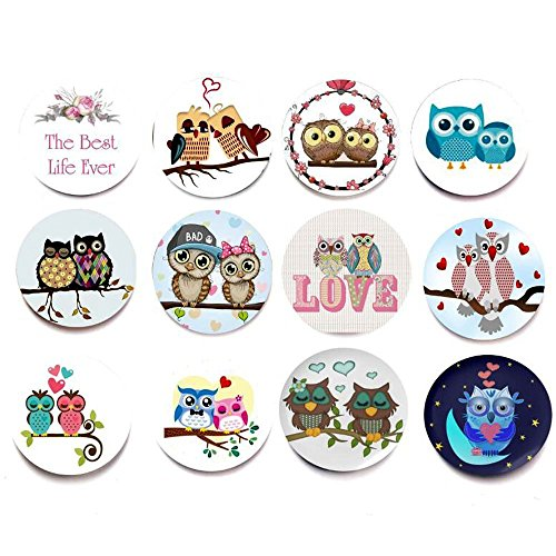 Superhappy 12 Fridge Magnets Kitchen Whiteboard Refrigerator Magnets Office Magnets 3D Funny Glass Magnets for Map, Home Decoration, Arts & Crafts,Lockers Accessories (Love Owl)