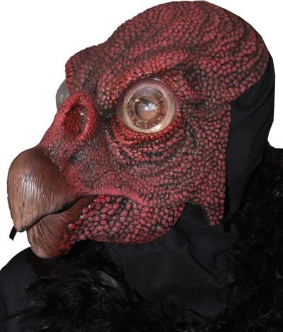 [Vulture Adult Mask Size One-Size] (Vulture Mask)