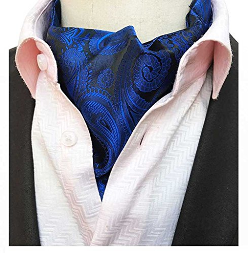 c Paisley Neckties Jacquard Woven Cravat Scarf Ascot Ties ()