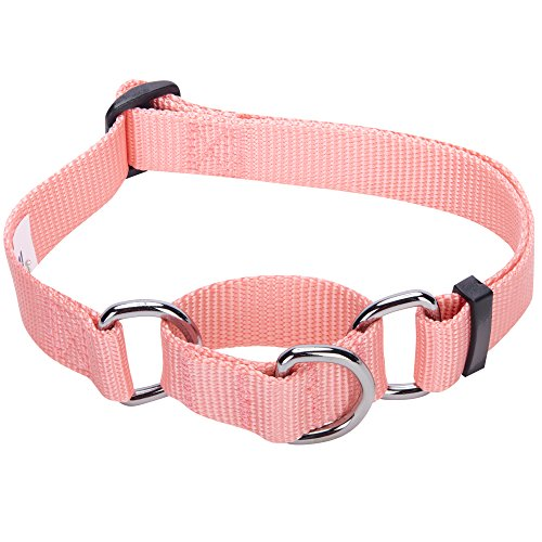 Blueberry Pet 19 Colors Safety Training Martingale Dog Collar, Baby Pink, Small, Heavy Duty Nylon Adjustable Collars for Dogs