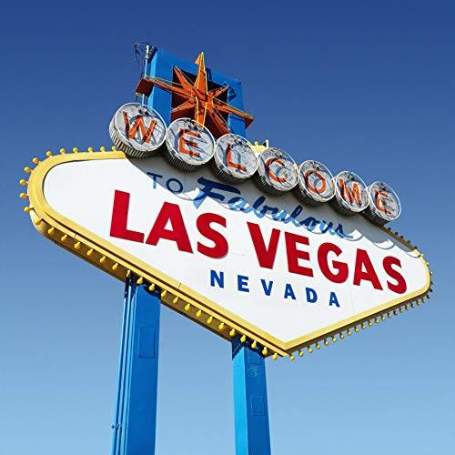 Yeele 4x4フィート 背景幕 Welcome to Fabulous Las Vegas Nevada サインプレート 写真撮影用 世界的に有名な都市愛好家 大人 男の子 女の子 休暇 旅行 ポートレート 写真ブース 撮影 ビニール スタジオ小道具   B07JC1CDYY